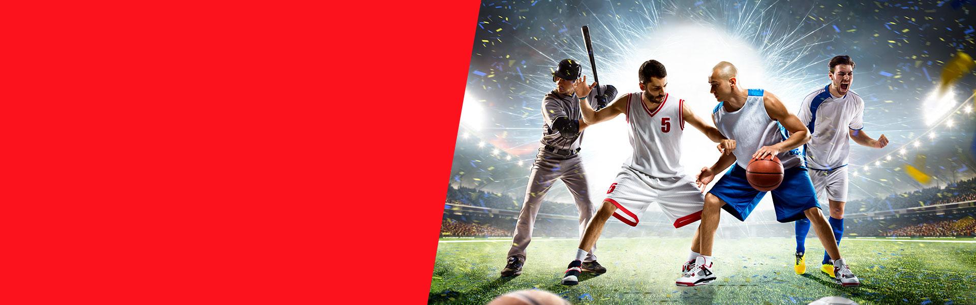 Banner Promocion Momios Mejorados